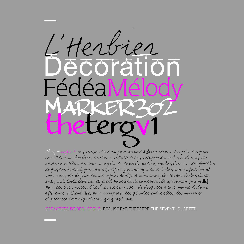 FEDEA MELODY 18