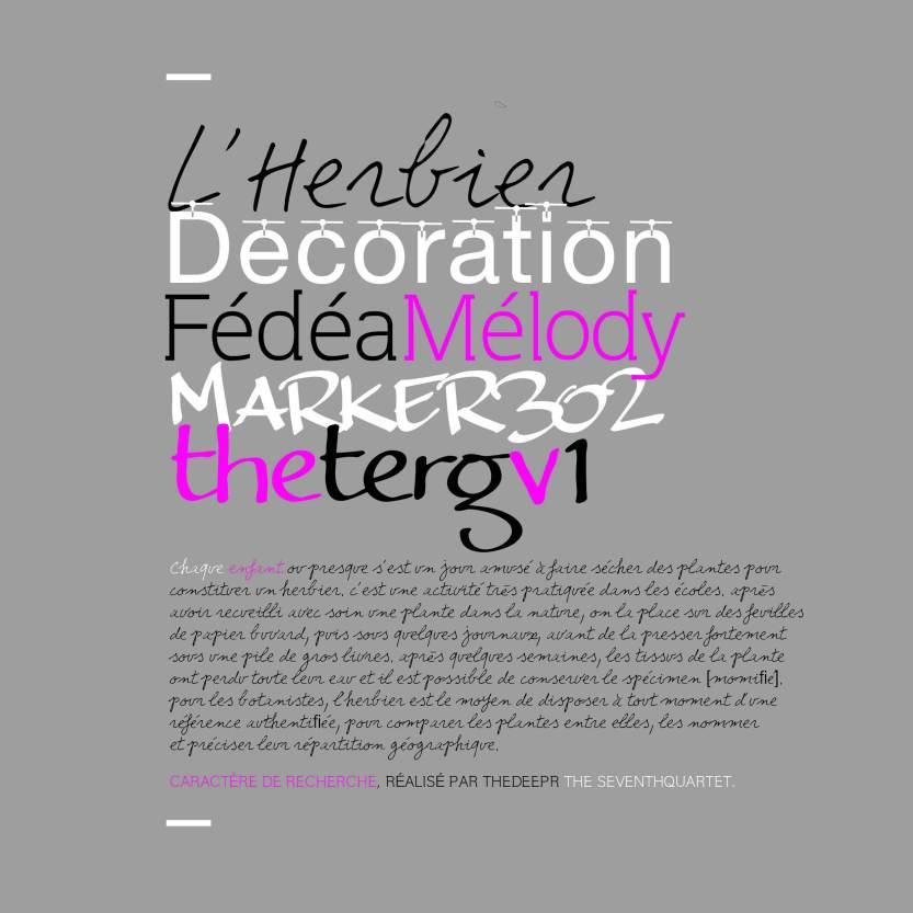 FEDEA MELODY 18.jpg