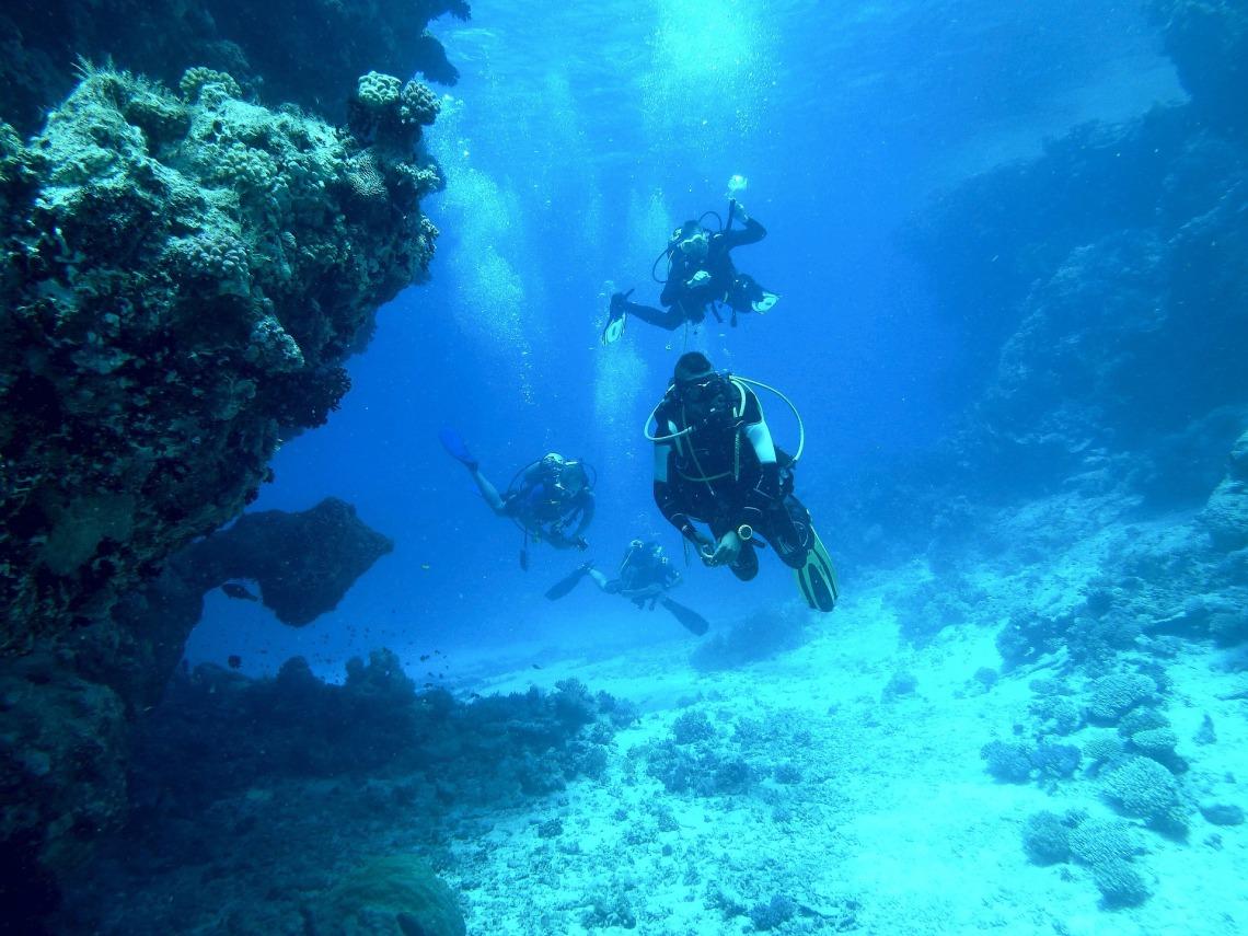 diving-813028_1920.jpg